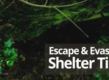 Escape And Evasion Shelter Tips