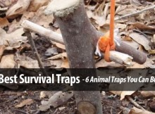 6 DEADLY SURVIVAL HUNTING TRAPS WITH INSTRUCTIONS!