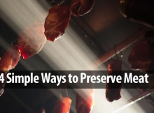 Preserve Meat